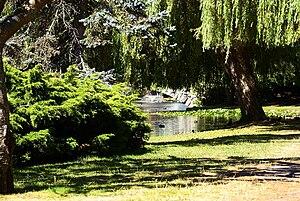 English: Beacon Hill Park.
