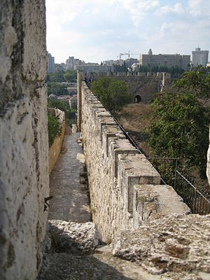 English: Old City Walls of Jerusalem - on Moun...