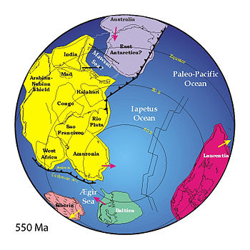 Reconstruction of Earth 550 Ma ago showing the...