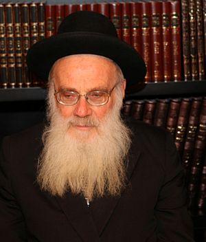 rabbi m y schlesinger