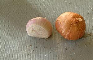 Shallot bulbs