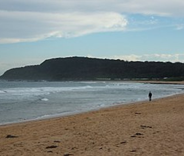 Shelly Beach 2010 Jpg