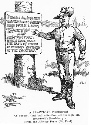 English: 1908 US editorial cartoon on Theodore...