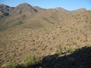 Scottsdale hills