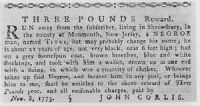 John Corlies's runaway advertisement for Titus.