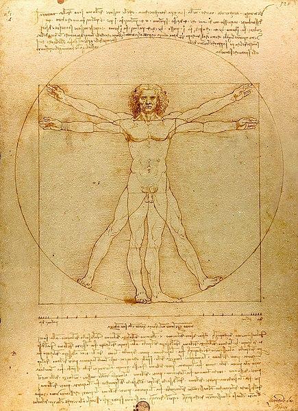 File:Da Vinci Vitruve Luc Viatour (cropped).jpg