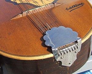 Tailpiece of a mandolin.
