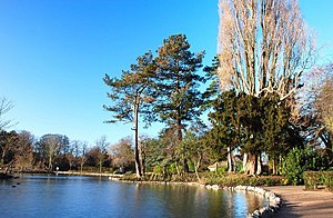English: Peoples park during revamp