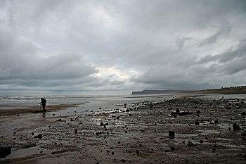 English: Marske beach Gentleman metal detectin...