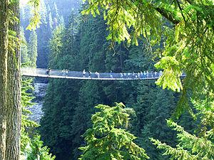 Capilano suspension bridge.