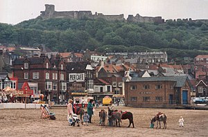 English: Donkeys on the beach at Scarborough. ...