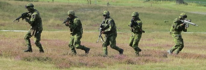 Soldater Revinge 2013