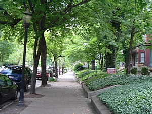 English: Tree lined 4th Street in Old Louisvil...