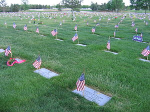 Flags that were placed on gravesites at Fort L...