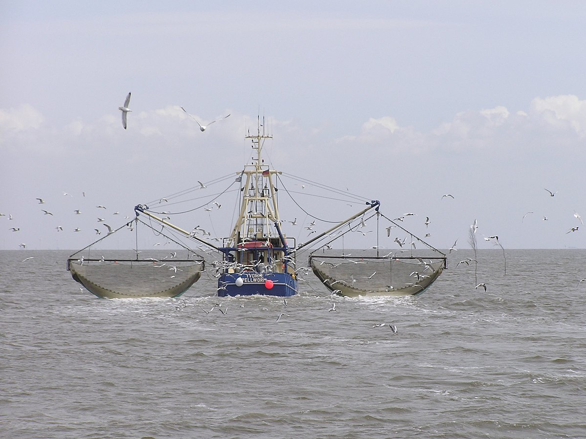Fishing Vessel Wikipedia