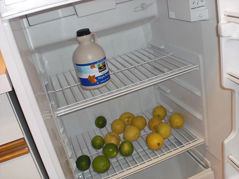 File:Master Cleanse refrigerator.jpg