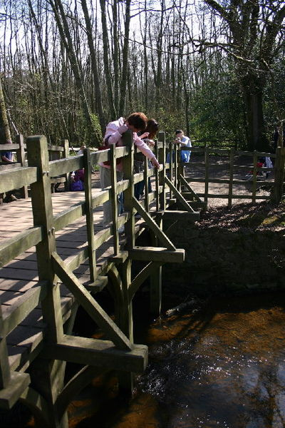 Wikipedia: Poohsticks Bridge in Ashdown Forest