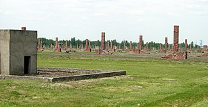 English: Auschwitz II-Birkenau ruins.