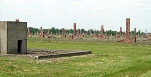 English: Auschwitz II-Birkenau ruins.