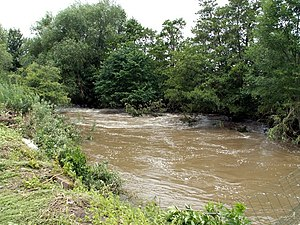 The River Dearne the day after flooding.
