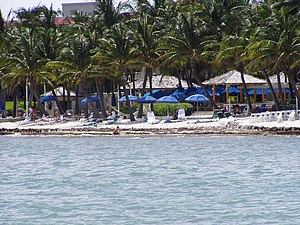 beach in Key West