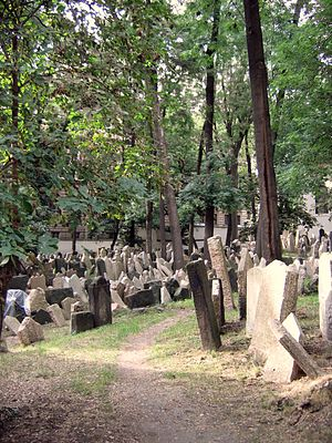 English: Old Jewish Cemetery. Josefov, Prague.