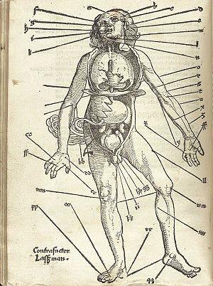 Hans von Gersdorff (ca. 1455 - 1529): Feldtbůc...
