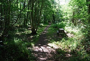 English: Picnic tables, Oldbury Woods