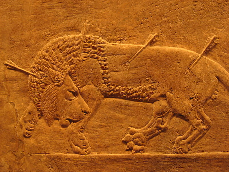 Fichier:Assyrian royal lion hunt.jpg