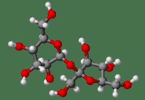 Molecule de saccharose