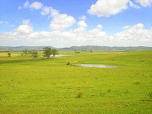Pampa grasslands, Campos do Rio Grande do Sul