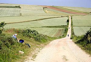 Some European pilgrims on the road to Santiago...