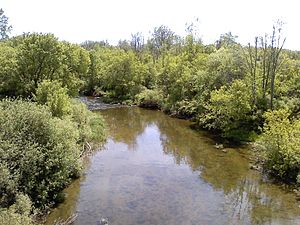 English: The Clinton River in Macomb County, M...