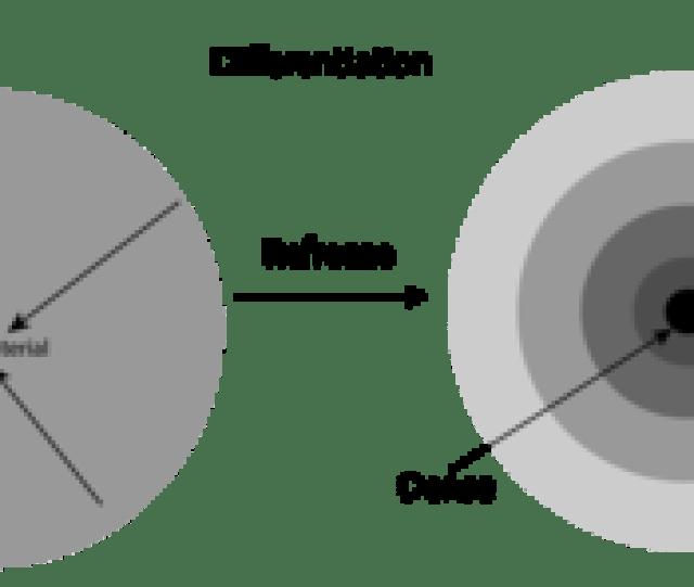La Formation Des Planetesmodifier Modifier Le Wikicode