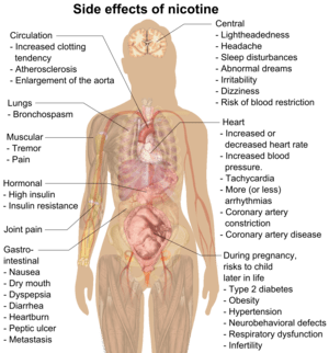 English: Main side effects of nicotine (See Wi...