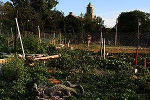 61st St. Community Garden, Chicago