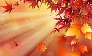 English: fall leaves wallpaper, fall season wa...