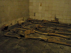 Human remains in St Eusebius' Church, Arnhem