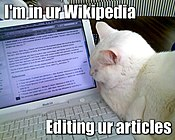 """A lolcat image using the """"Im in ur..."""" format, featuring a cat """"editing"""" the dwarf planet article on Wikipedia"""