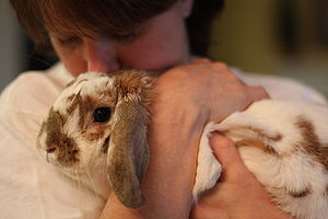 English: A woman and her rabbit Français : Une...