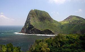 Hamilton has a family home in Maui, Kauai (and...