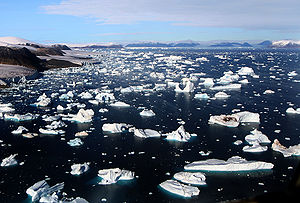 Icebergs are breaking off glaciers at Cape York, Greenland.