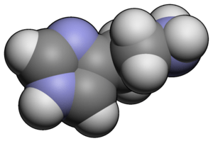 3d molecular spacefill of Histamine
