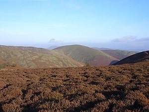 On Long Mynd - Shropshire