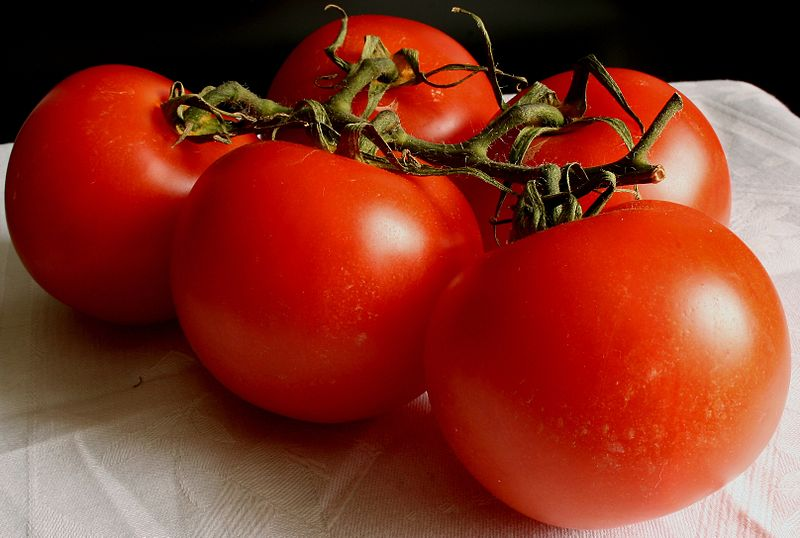 https://i2.wp.com/upload.wikimedia.org/wikipedia/commons/thumb/3/3b/Tomate_2008-2-20.JPG/800px-Tomate_2008-2-20.JPG