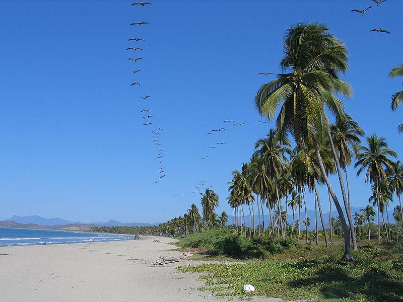 File:20050103-Ixtapa Playa Linda.jpg