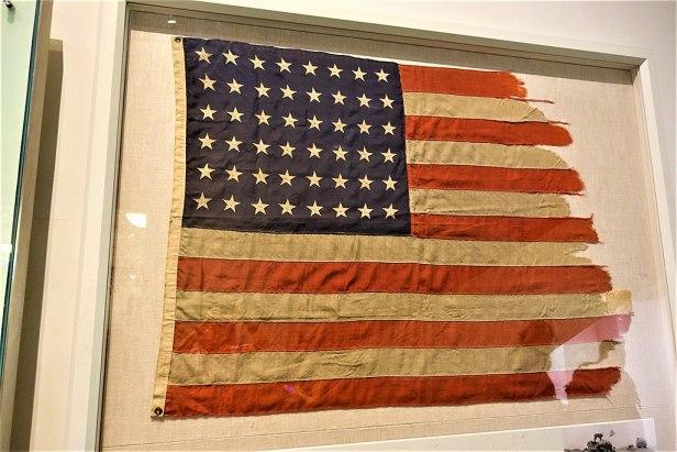 Gobi Flag - American Museum of Natural History