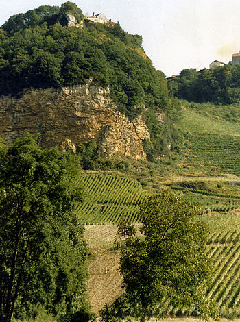 Image of vineyard areas in the Jura region of ...