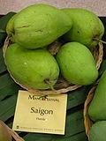 Mango Saigon Asit ftg.jpg