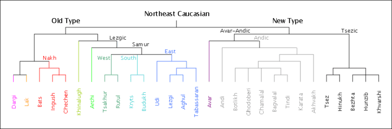 File:Northeast Caucasian Splits.png